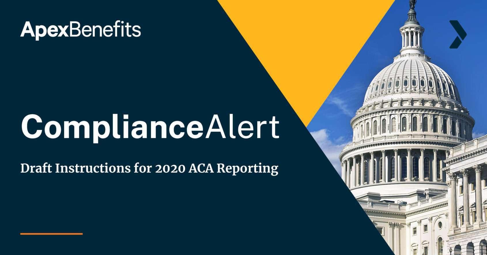 Draft Instructions ACA Reporting